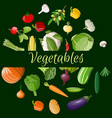 big vegetable icon set vector image vector image