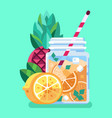 exotic mixed fruit summer cocktail or smoothie vector image