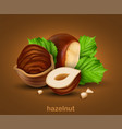 hazelnuts with green leaves on a brown background vector image vector image