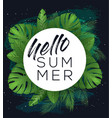hello summer poster vector image vector image