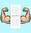 male muscle arms banner template vector image vector image