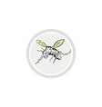 Mosquito Flying Front View Cartoon vector image