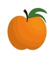 orange citrus fruit isolated icon vector image vector image
