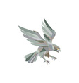 Peregrine Falcon Swooping Grey Low Polygon vector image vector image