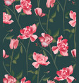 roses pink plant botanical wild pattern vector image