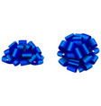 blue isolated bow side and top view vector image vector image