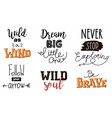 collection of wild letterings vector image