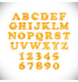 english alphabet and numerals from orange vector image vector image