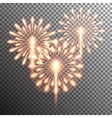 isolated realistic fireworks vector image vector image