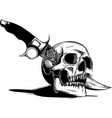a human skull with a knife vector image vector image