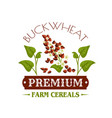 buckwheat cereal poster or emblem vector image vector image