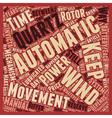 How Automatic Watches Work text background vector image vector image