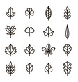 leaf signs black thin line icon set vector image