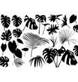silhouetted tropical leaves set vector image vector image