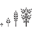 Trees of different ages vector image