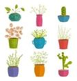 Set of green indoor plants in pots vector image