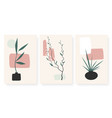 abstract geometric shapes vases with plant branch vector image vector image