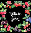 eco food organic cafe menu frame design vector image