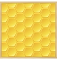 frame from hive vector image