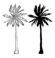palm tree silhouette icons on white background vector image vector image