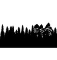 with black forest vector image vector image