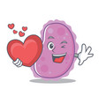 with heart bacteria mascot cartoon style vector image vector image