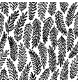 acacia leaves hand drawn seamless pattern vector image