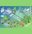 botanical garden flowchart vector image vector image