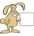cartoon rabbit holding a sign vector image vector image