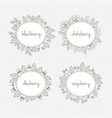 collection of frames with berries and leaves vector image