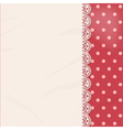 lace panel border background vector image vector image