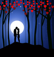 valentine night vector image vector image