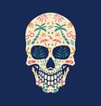beach skull vector image vector image