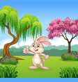 Cartoon little bunny giving thumb up vector image vector image