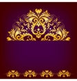 Elegant background with lace ornament vector image vector image