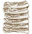 engraving bacon slices vector image