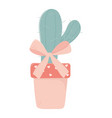 happy valentines day potted cactus bow love hearts vector image