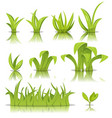 leaves grass and lawn set vector image vector image