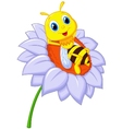 Little bee cartoon resting on the big flower vector image vector image