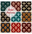 Royal decorative ornate patterns set vector image