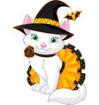 cat witch vector image vector image