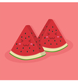 Cute Watermelon Fruit Mascot Pink vector image vector image