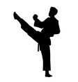 Karate fighter isolated vector image vector image