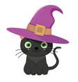 black halloween cat in violet witch hat vector image vector image