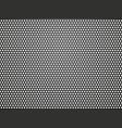 black metalic texture vector image