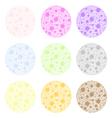 color polka dots vector image vector image