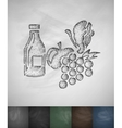 fruit icon Hand drawn vector image vector image