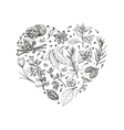 Isolated heart from spices and herbs on white vector image