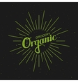 Organic Grocery Sign vector image