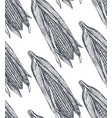 seamless pattern with hand drawn sketched vector image vector image